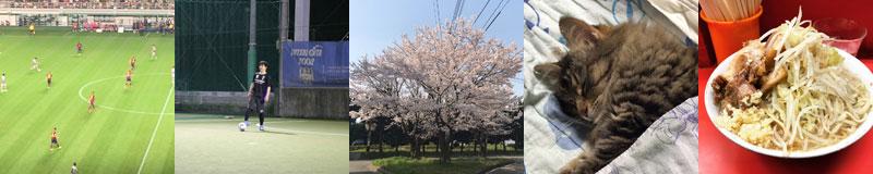 後藤 遼河アイテム|大分の規格住宅・建売住宅 sakai(サカイ)の家
