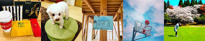 林 実希アイテム|大分の規格住宅・建売住宅 sakai(サカイ)の家